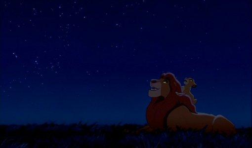 Simba's lesson