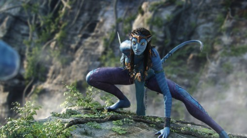 Neytiri fights